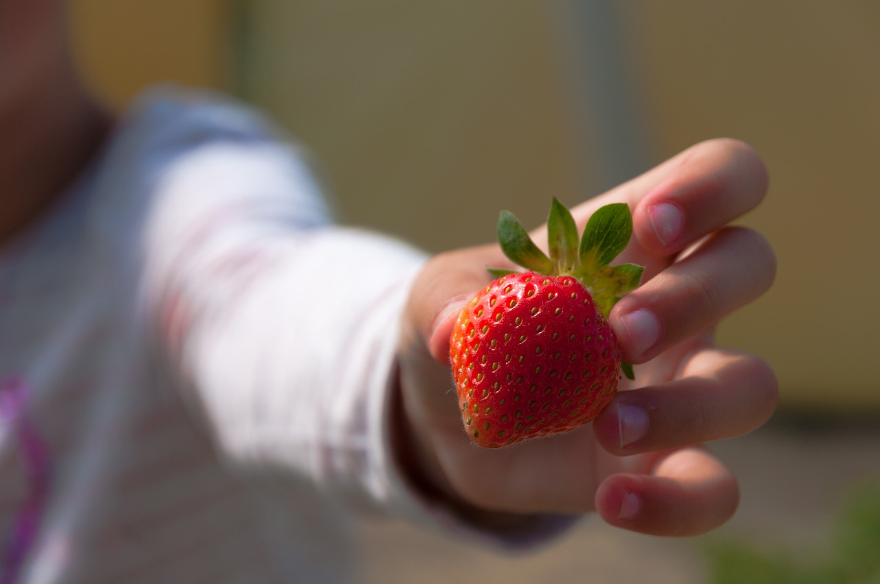 Fresh from Florida Strawberries are IN SEASON NOW!