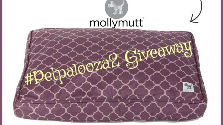 #Win Molly Mutt Wool-Filled Crate Pad! #Petpalooza2