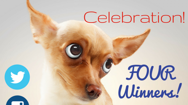 4 #Winners-  $20 Cash, Amazon GC, Craft Kits or FotoJet Membership!