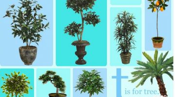 Transform Your Outdoors with PermaLeaf® Artificial Plants #Review