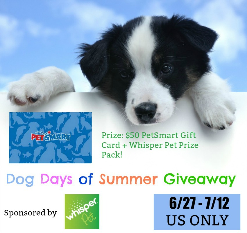 Dog Days of Summer Giveaway