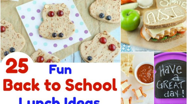25 Fun Back to School Lunch Ideas all Kids Will Love!