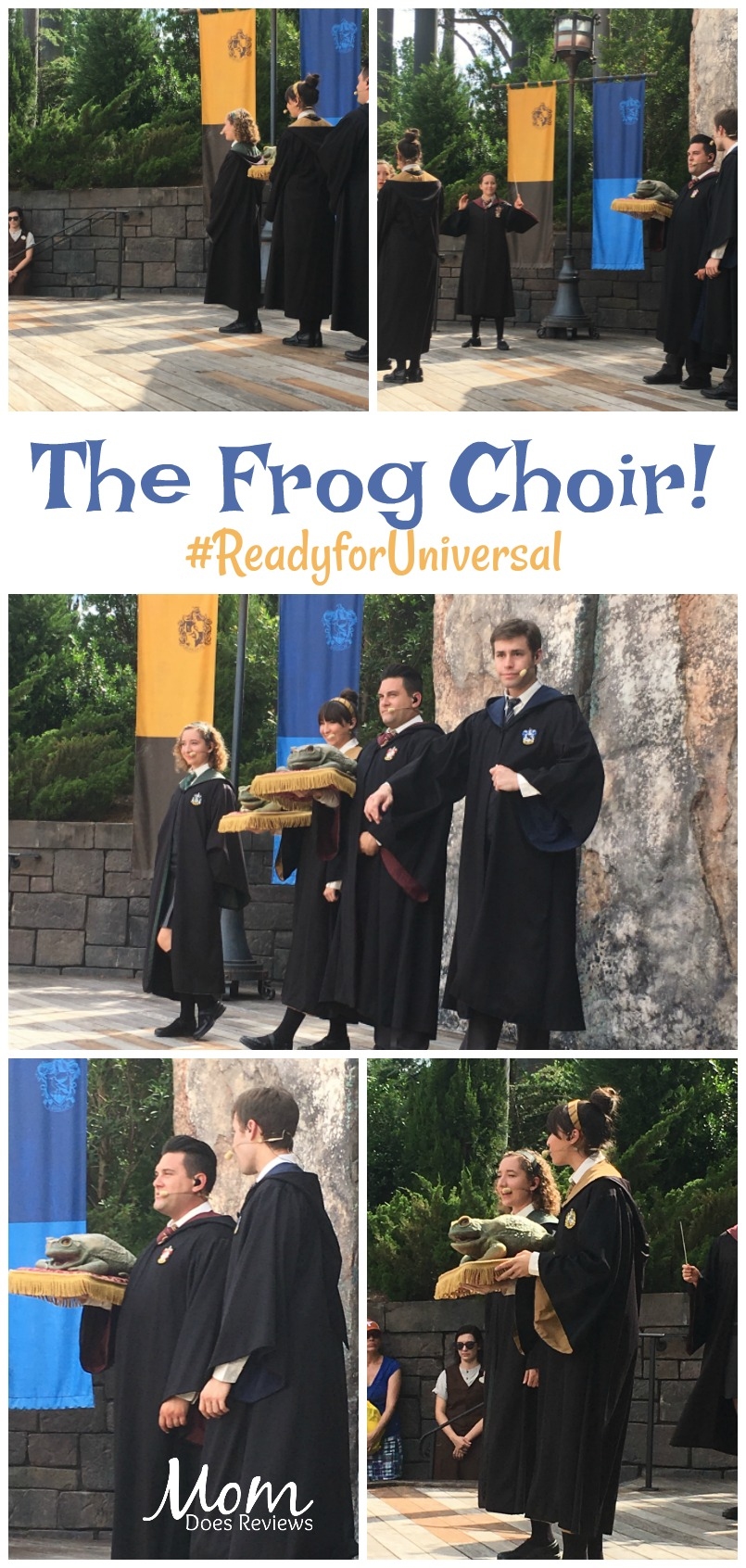 The Frog Choir