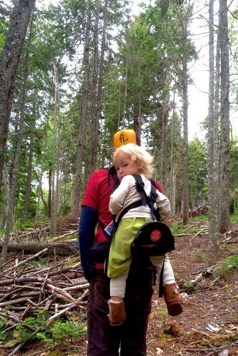 freeloader child carrier