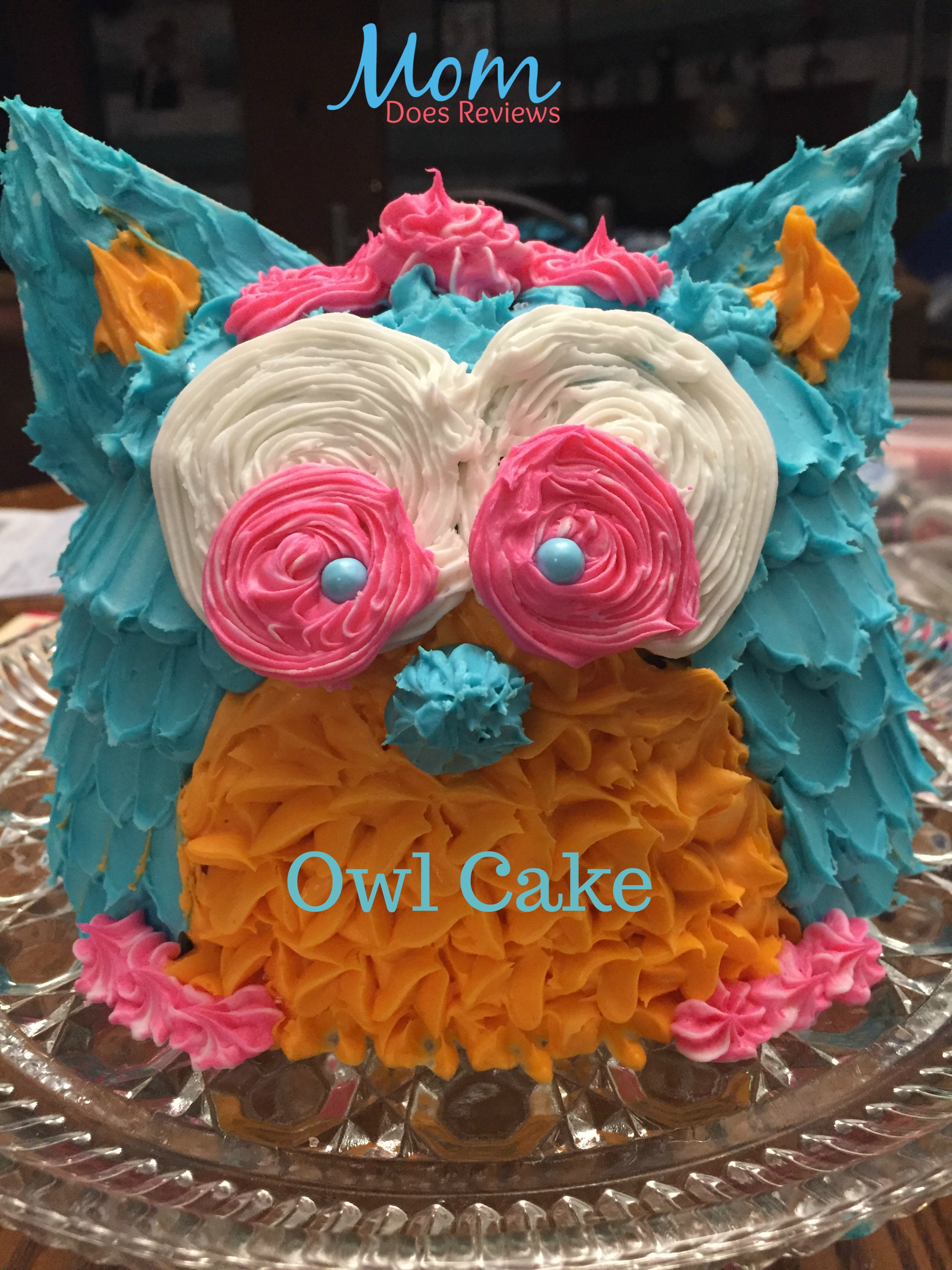 Owl cake for an Owl-themed Birthday party