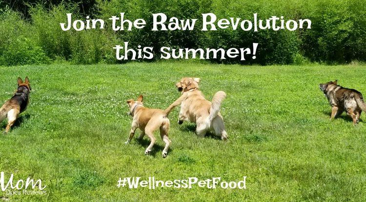 Join the Raw Revolution this Summer! #WellnessPetFood