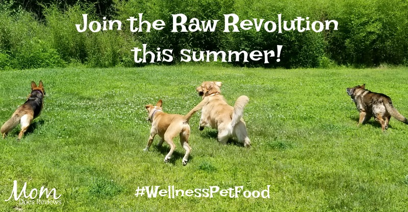 Join the Raw Revolution