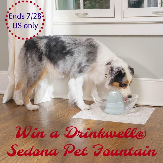Drinkwell Sedona Pet Fountain
