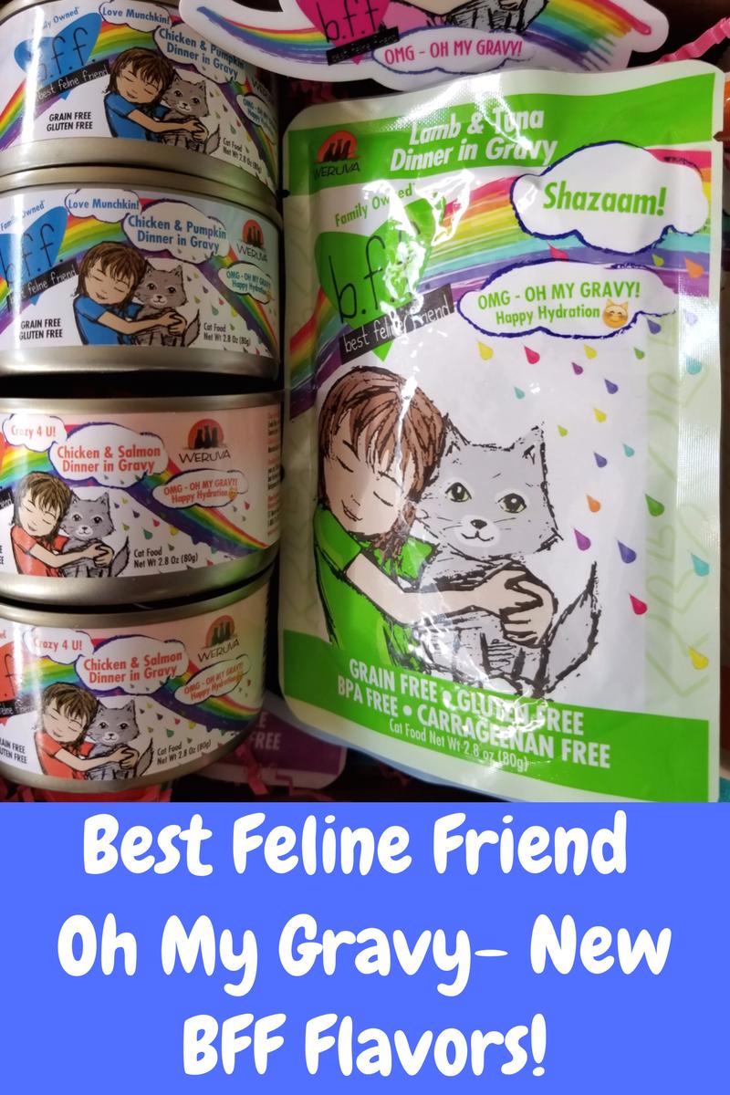 Best Feline Friend Food