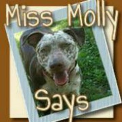 Miss Molly Says