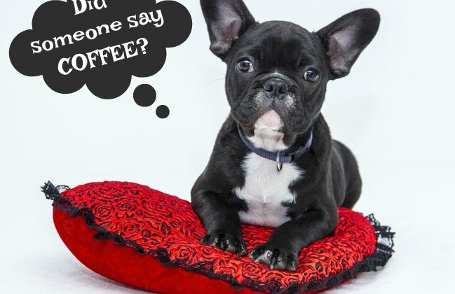 Did someone say coffee
