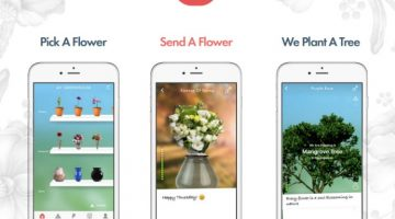 Send a Virtual Bouquet or Single Rose with the Flowerling app #Review #ad