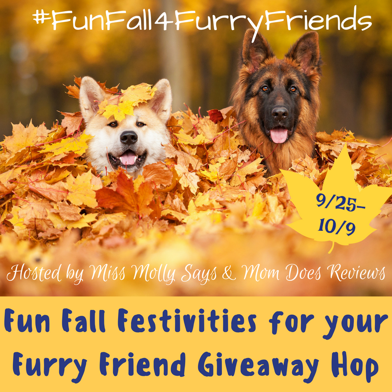 Fun fall 4 Furry Friends hop