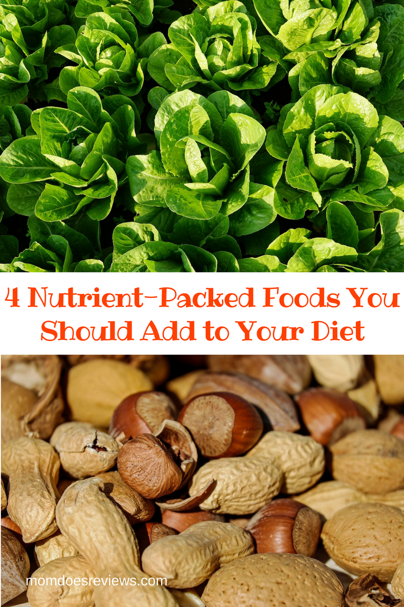 Nutritious and Delicious: 4 Nutrient-Packed Foods You Should Add to Your Diet