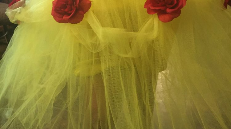 DIY Tutu for Halloween Costumes #Craft