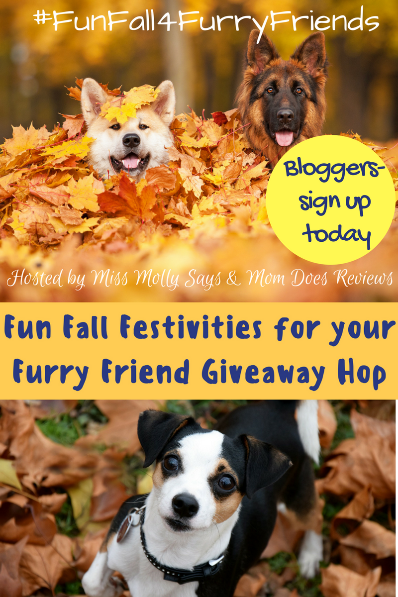 Bloggers wanted- sign up for Fun Fall Giveaway Hop