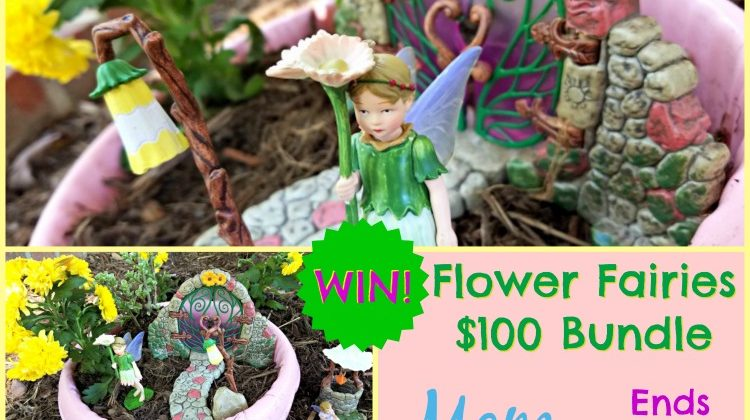 #WIN Flower Fairies $100 Bundle Open to US, ends 10/20