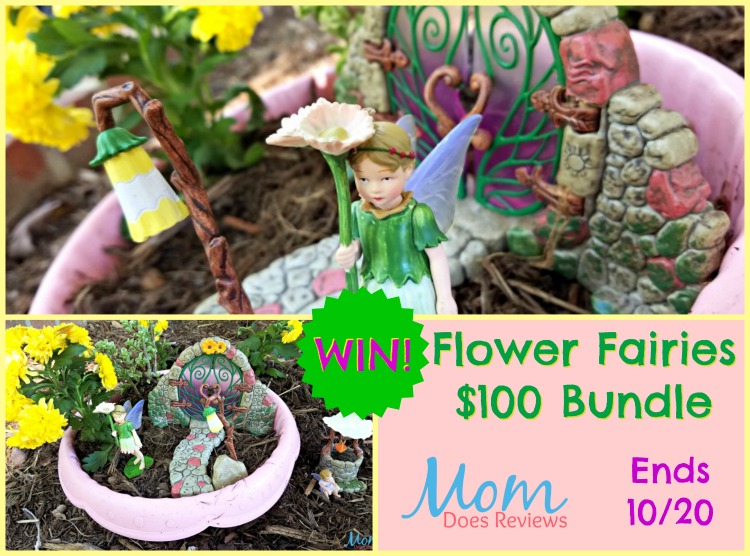 Flower Fairies Giveaway