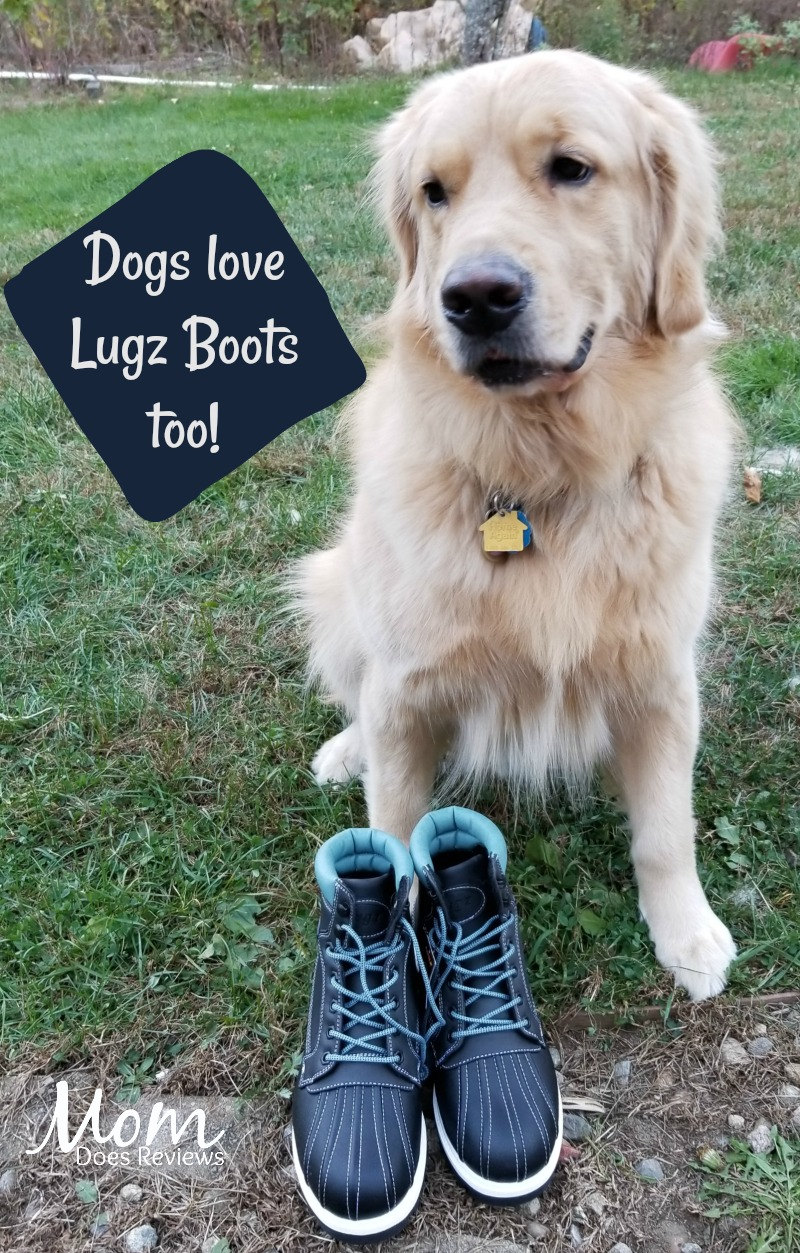 Dogs Love Lugz