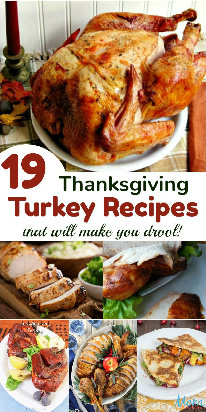 19 Thanksgiving Turkey Recipes that will make you drool banner