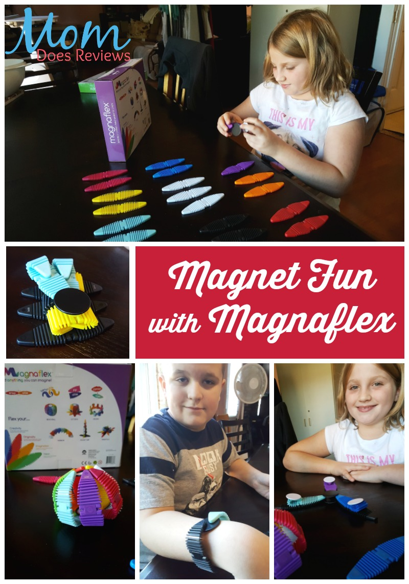 Magnet Fun with Magnaflex