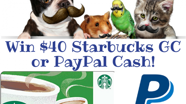 win Starbucks or Paypal