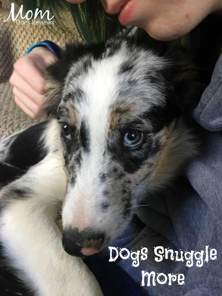 Dogs Snuggle More