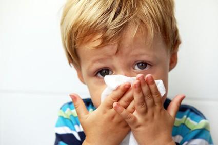 Scotties will comfort a sore nose