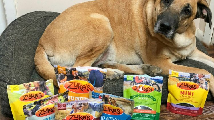 Treat your Pet to a Healthier New Year with Zuke's Wholesome Treats #MegaChristmas17