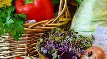 Learn to eat Healthier with EduPlated- Nutrition For all