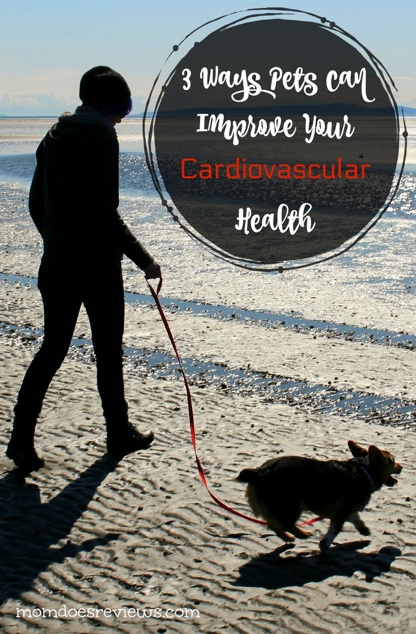 3 Ways Pets can Improve Your Cardiovascular Health