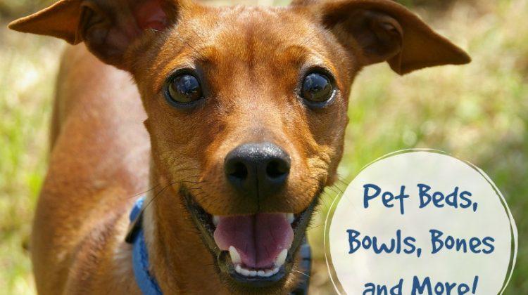 Pet Beds, Bowls, Bones and More!