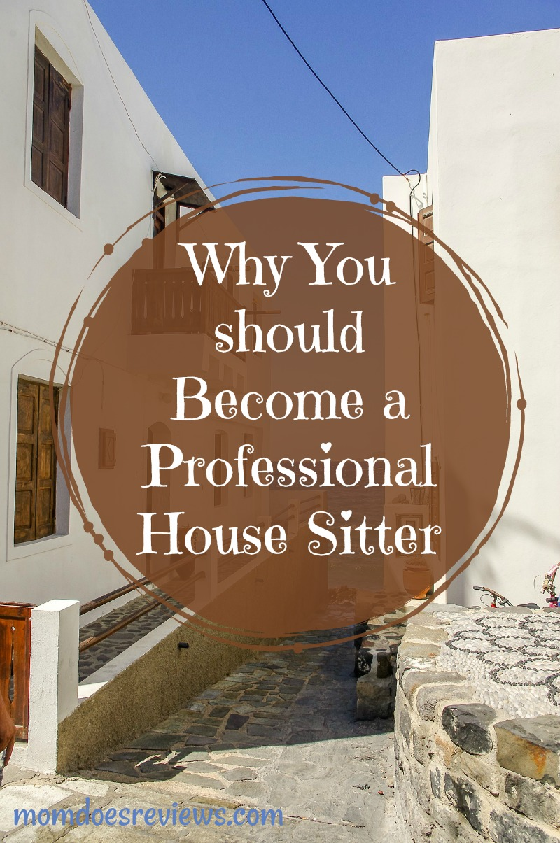Why You should Become a Professional House Sitter