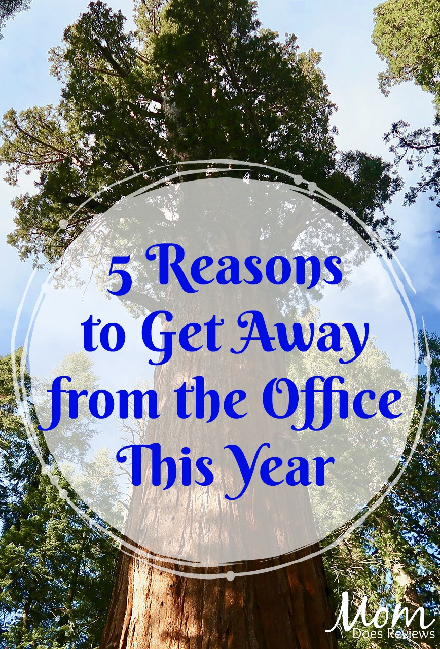 5 Reasons to Get Away from the Office This Year