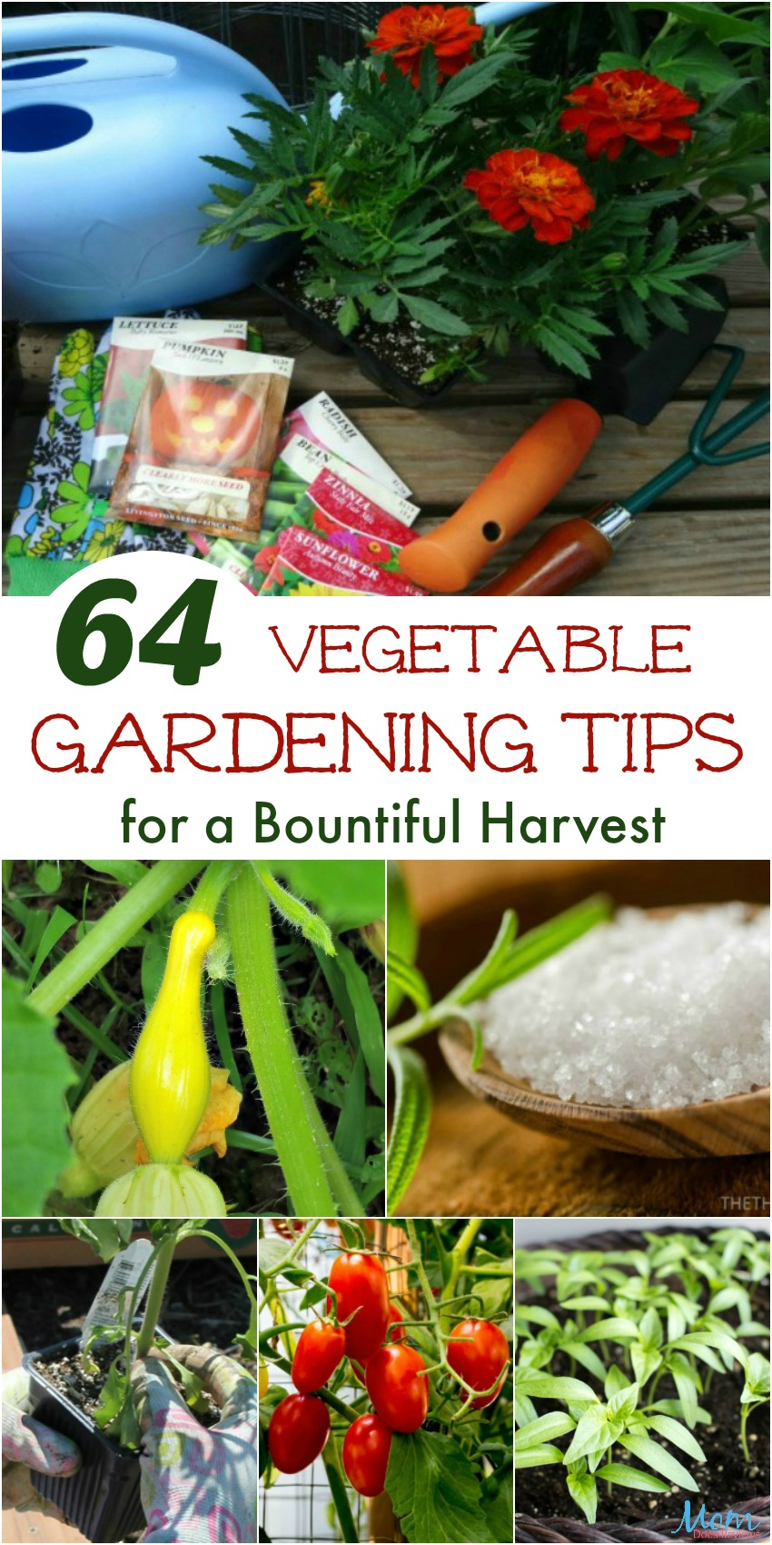 64 Vegetable Gardening Tips for a Bountiful Harvest banner