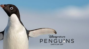 See Disneynature's PENGUINS First Trailer today to Celebrate Earth Day #DisneynaturePenguins