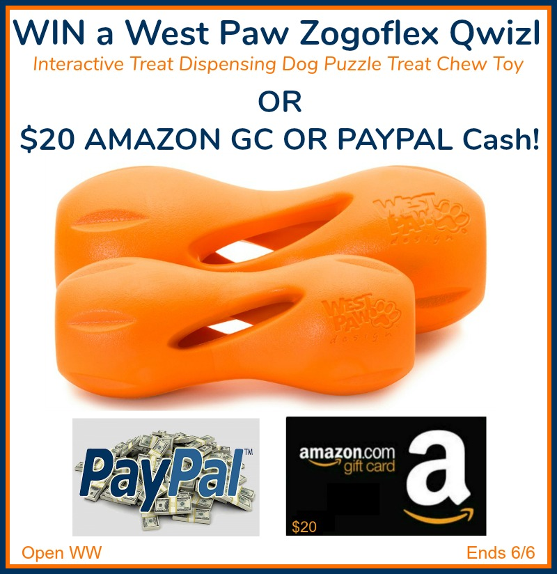 Qwizl dog toy giveaway