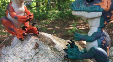 Untamed Raptors Unleashed