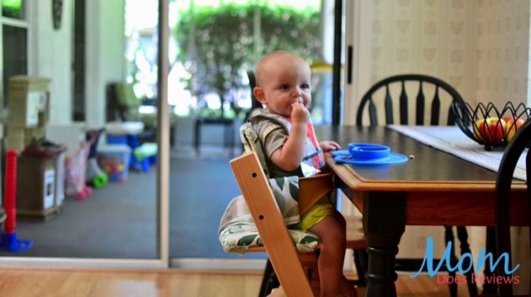 Stokke Tripp Trapp High Chair Grows with Your Baby