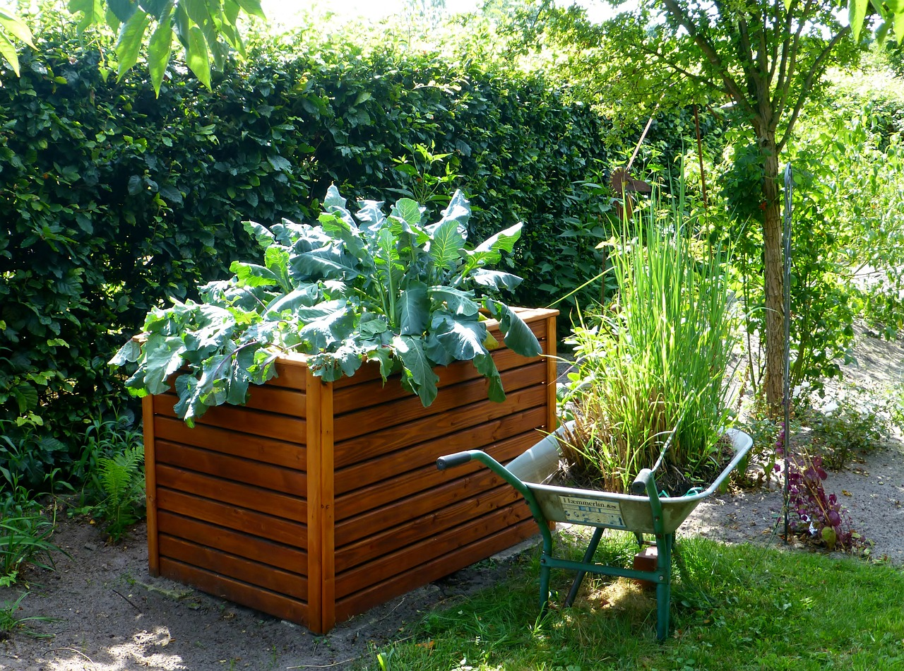 Is a Raised Summer Garden Right for You?