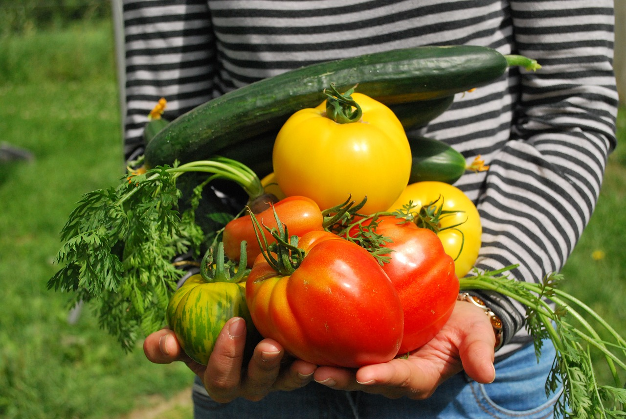 Growing Vegetables in Your Summer Garden