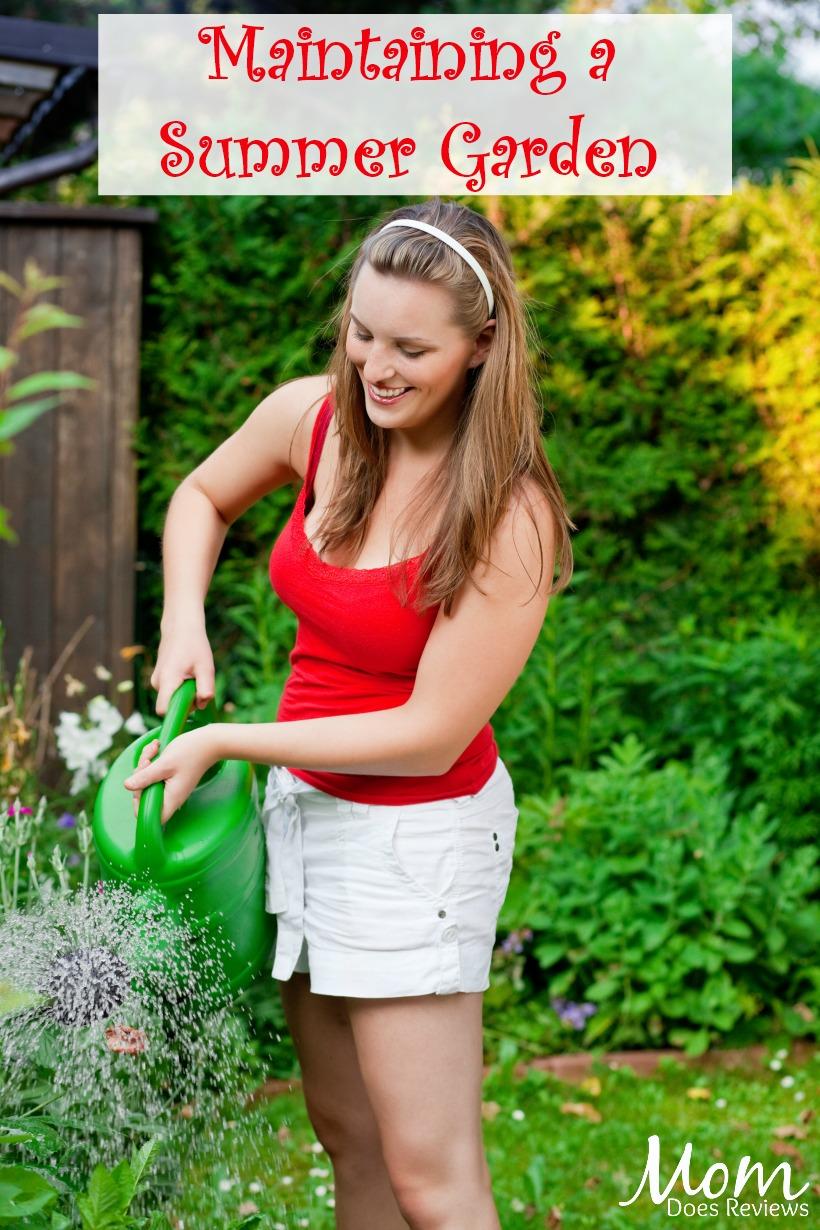 Maintaining a Summer Garden #gardening #garden #summer #flowers