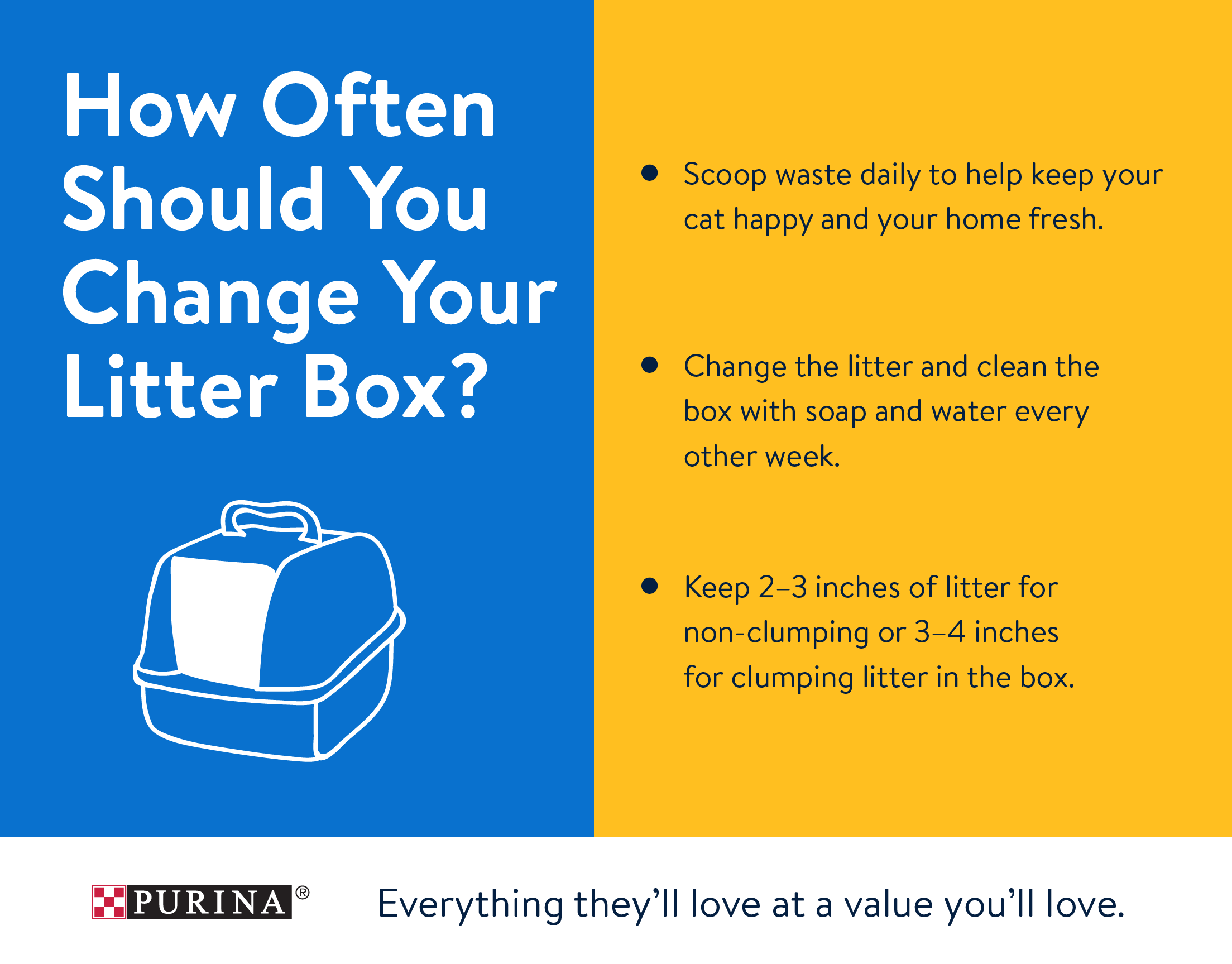 o How often should you change your cat litter?