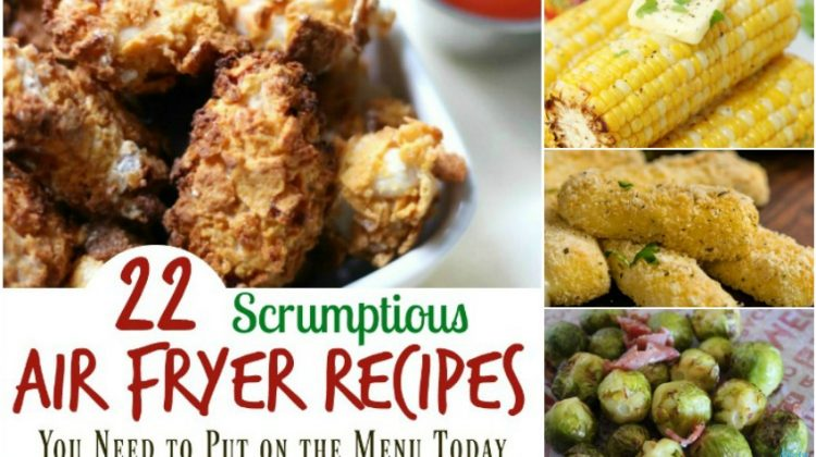 22 Scrumptious Air Fryer Recipes You Need to Put on the Menu Today