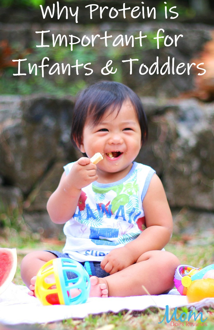 Why Protein is Important for Infants & Toddlers #parenting #healthy #healthyfood #babies