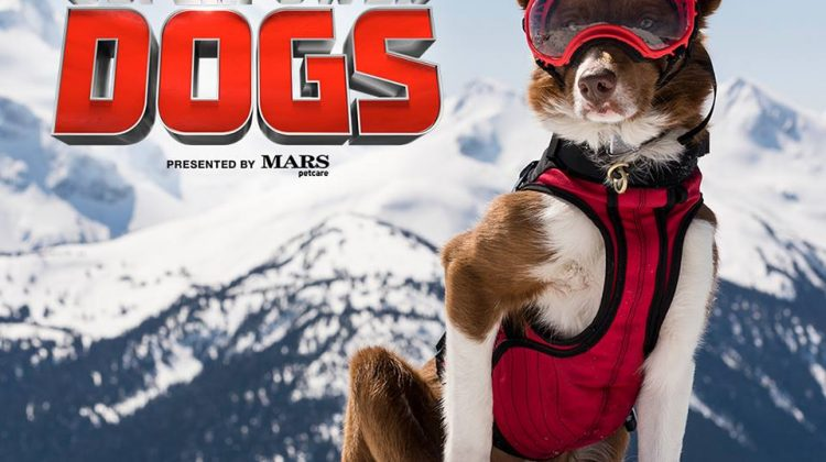 Watch the Teaser Trailer for  IMAX® documentary Superpower Dogs presented by Mars Petcare