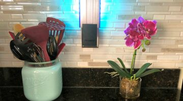 Stop Those Pesky Flies With DynaTrap Flylight Insect Trap #Review