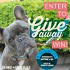 Neptune & Co. Giveaway Extravaganza Event with 5 WINNERS!!!