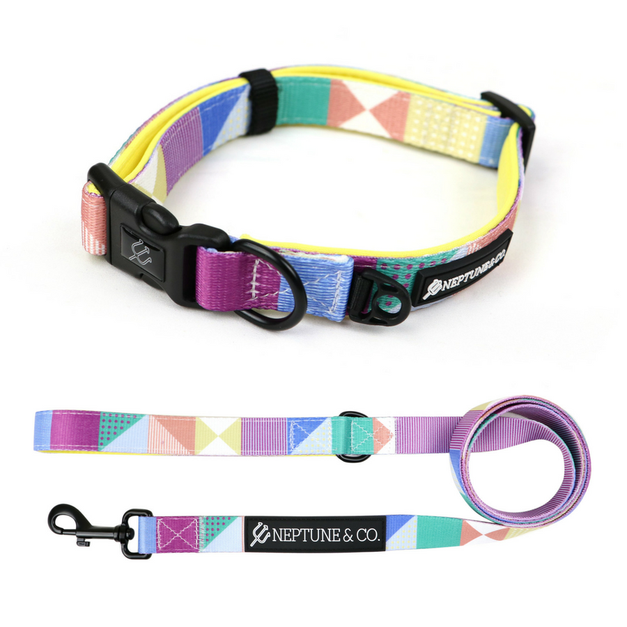 Neptune & Co Dog Collar & Leash Set #BuyOneGive1 #forthedogs