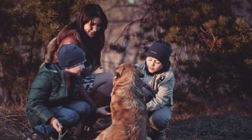 4 Areas of the Home Families Should Care for in the Fall